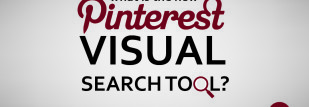What is the Pinterest Visual Search Tool?
